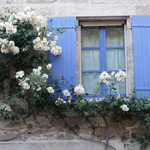 Blue Shuttered Window Uzes, All Things French