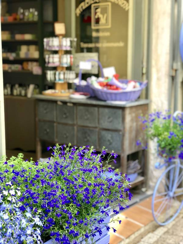 Lavender Story. Uzes. Provence Alpes Cote d'Azure. All Things French TOURS