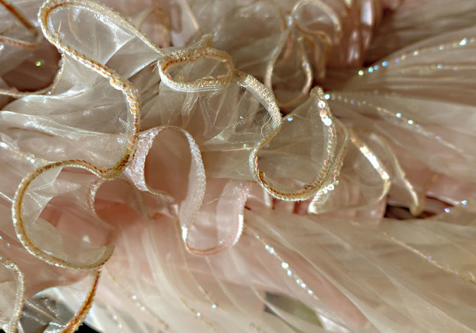 Dalida Exhibition Dress Frill